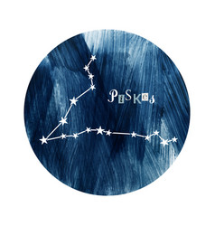 the pisces zodiac constellation vector image