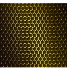 Gold metal grid vector image