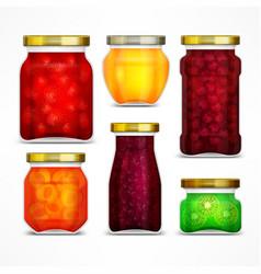 natural fruit jam preserves vector image