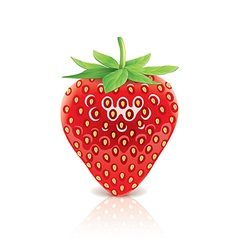 object strawberry vector image vector image