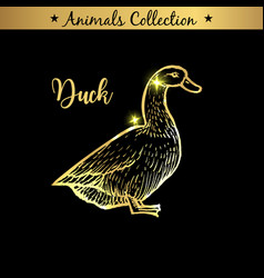 golden and royal hand drawn emblem of farm duck vector image