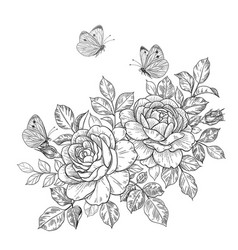 Hand drawn rose flowers and butterflies vector