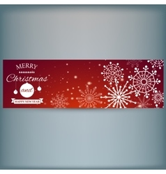 Web banner with snowflakes vector image