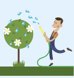 gardener is watering vector image vector image