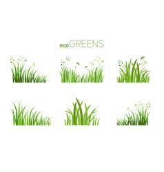 Eco icon grass vector