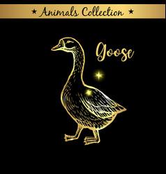 golden and royal hand drawn emblem of farm goose vector image