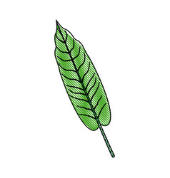leave plant and nature element ecology vector image