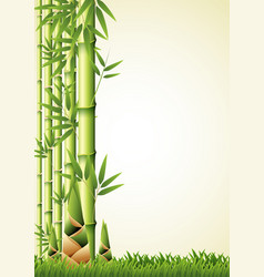nature background design with bamboo vector image