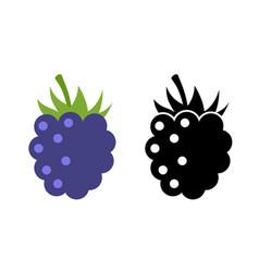 raspberry icon flat berry vector image