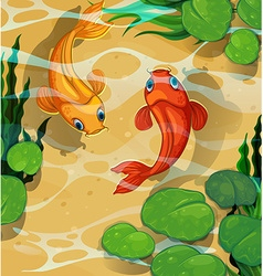 Scene with kois swimming in the pool vector