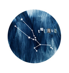 the taurus zodiac constellation vector image