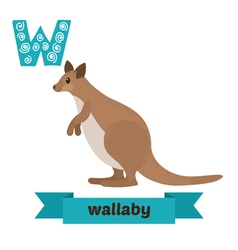 Wallaby W letter Cute children animal alphabet in vector