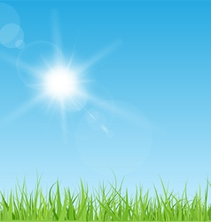 Sun and grass vector image vector image