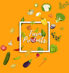 farm product banner with vegetable vector image