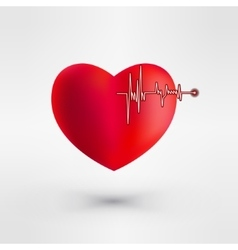 Heart with EKG signal Valentine day vector