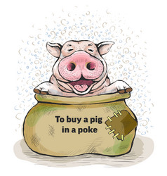 postcards with a piglet to buy a pig in a poke vector image