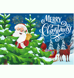 santa with christmas bell sleigh and xmas gifts vector image