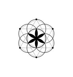 Seed life tattoo sacred geometry mystic mandala vector