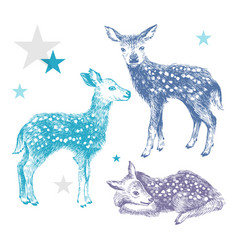 3 hand drawn colorful baby deers vector image vector image