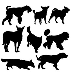 set silhouette black dog on a white background vector image vector image