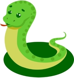 Snake On A White Background vector image vector image