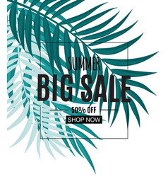 Abstract tropical summer sale background with palm vector