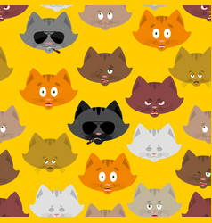 cat head pattern pet background ornament face vector image