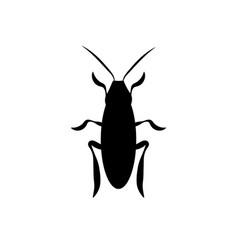 cockroach a beetle contour vector image