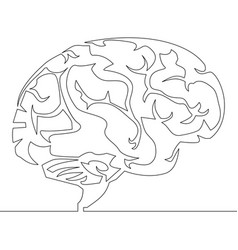 continuous line drawing brain design vector image