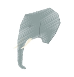 elephant african animal vector image