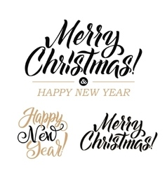Merry Christmas AND Happy New Year Calligraphy Set vector