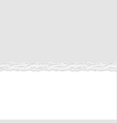 Ripped or torn paper divider background vector