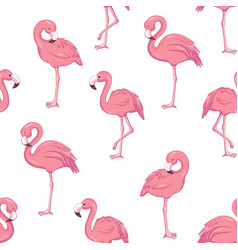 Tropical flamingo pattern vector