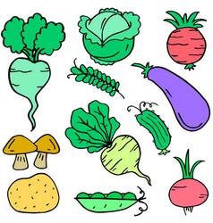 fresh vegetable set doodle collection vector image