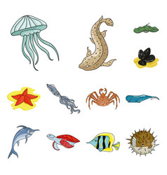 a variety of marine animals cartoon icons in set vector image