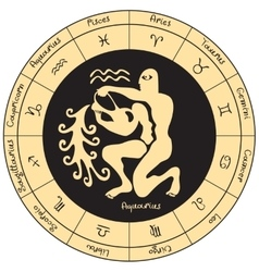 Aquarius with the signs of the zodiac vector