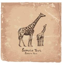 art giraffe vector image