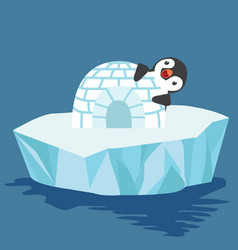 cute penguin with igloo ice house vector image