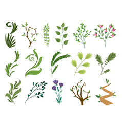 designer elements set collection green vector image