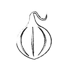 onion food diet healthy vector image