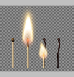 realistic match stick flame icon set vector image