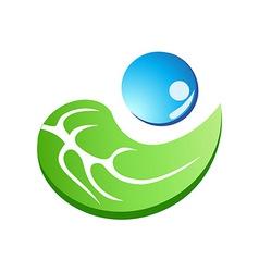 leaf with water drop symbol vector image vector image