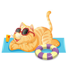 a cat on summer theme vector image