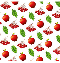 apples cherries and leaves pattern vector image