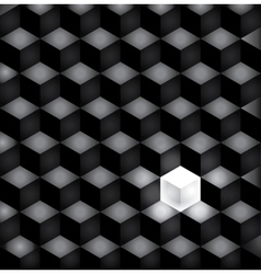 background black squares vector image