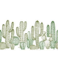 cactus seamless pattern sketch desert cactuses vector image