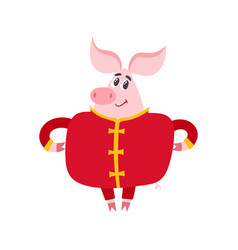 Cute pig in chinese clothes isolated on white vector