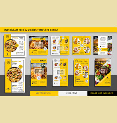 Food and culinary social media stories and feed vector