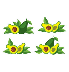 icon of the avocado vector image