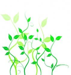 Leafy vine vector
